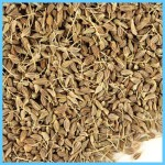 What is Anise?_12.jpg