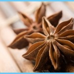 What is Anise?_13.jpg