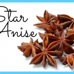 What is Anise?_15.jpg