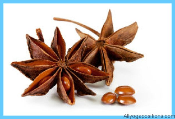 What is Anise?_16.jpg
