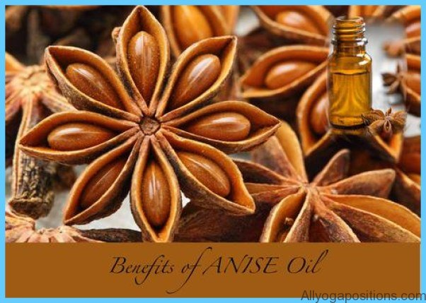 What is Anise?_2.jpg