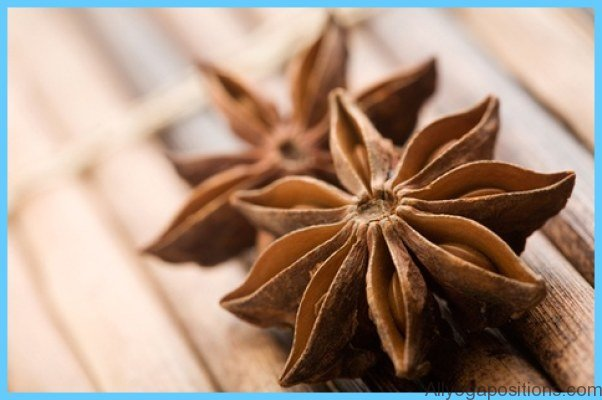 What is Anise?_8.jpg