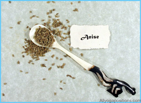 What is Anise?_9.jpg