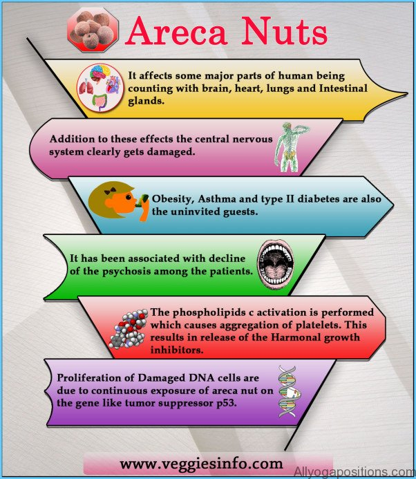 What is Areca Nut? How to Use Areca Nut_18.jpg