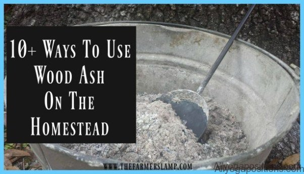 what-is-ash-how-to-use-ash_8.jpg