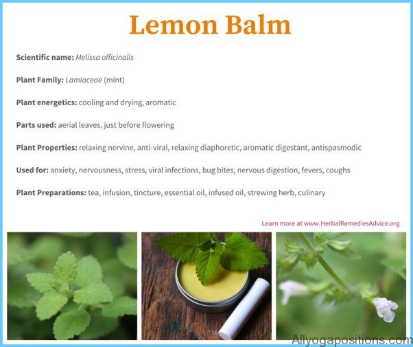 What is Balm? How to Use Balm_5.jpg