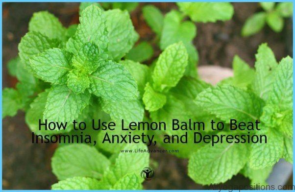 What is Balm? How to Use Balm_7.jpg