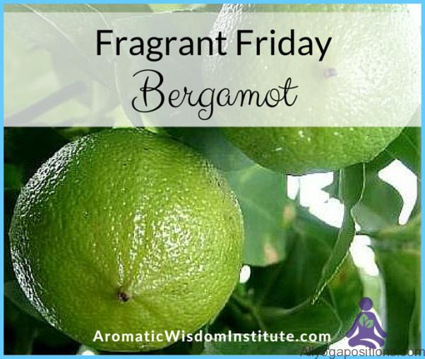What is Bergamot? How to Use Bergamot_11.jpg