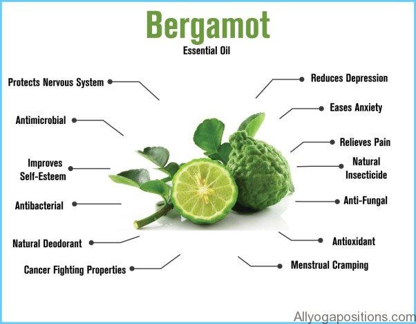 What is Bergamot? How to Use Bergamot_18.jpg