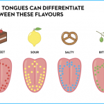 What is Bitter Flavours? How to Use Bitter Flavours_1.jpg