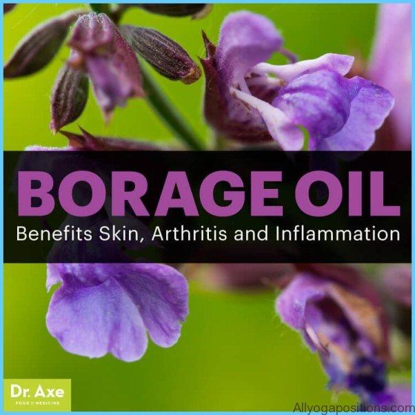 What is Borage? How to Use Borage_9.jpg
