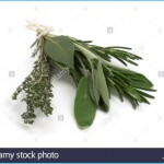 What is Bouquet Garni? How to Use Bouquet Garni_13.jpg