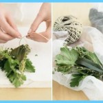 What is Bouquet Garni? How to Use Bouquet Garni_2.jpg