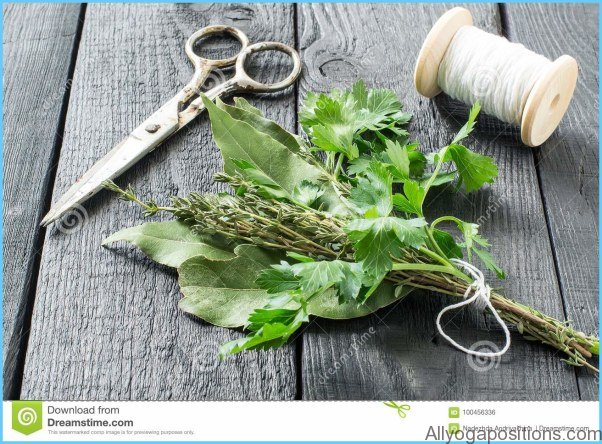 What is Bouquet Garni? How to Use Bouquet Garni_6.jpg