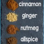 What is Spice and How Do You Use It?_11.jpg