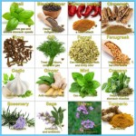 What is Spice and How Do You Use It?_15.jpg