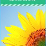 What is Sunflower and How Do You Use It?_0.jpg