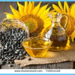 What is Sunflower and How Do You Use It?_5.jpg