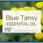 What is Tansy and How Do You Use It?_10.jpg