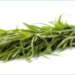 What is Tarragon and How Do You Use It?_16.jpg