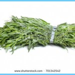 What is Tarragon and How Do You Use It?_6.jpg
