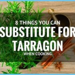 What is Tarragon and How Do You Use It?_8.jpg