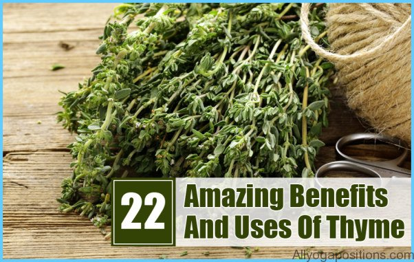 What is Thyme and How Do You Use It?_2.jpg