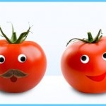 What is Tomato and How Do You Use It?_0.jpg