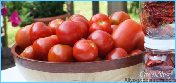 What is Tomato and How Do You Use It?_14.jpg