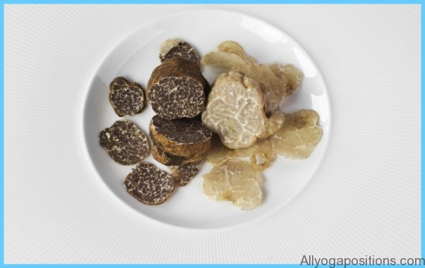 What is Truffle and How Do You Use It?_2.jpg