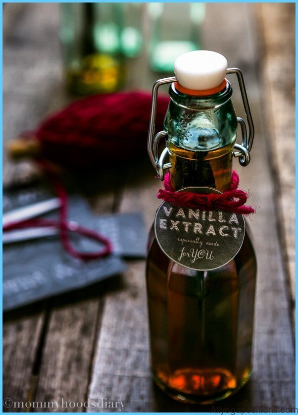 What is Vanilla and How Do You Use It?_11.jpg
