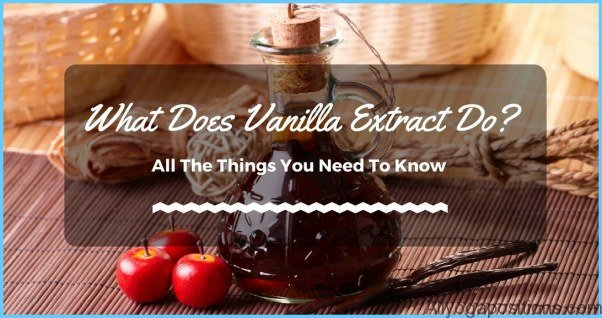 What is Vanilla and How Do You Use It?_12.jpg