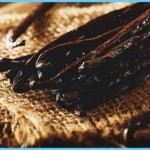 What is Vanilla and How Do You Use It?_14.jpg