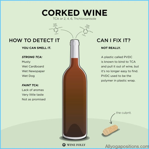 What is Wine and How Do You Use It?_2.jpg