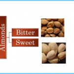 What's Bitter Almond?_15.jpg
