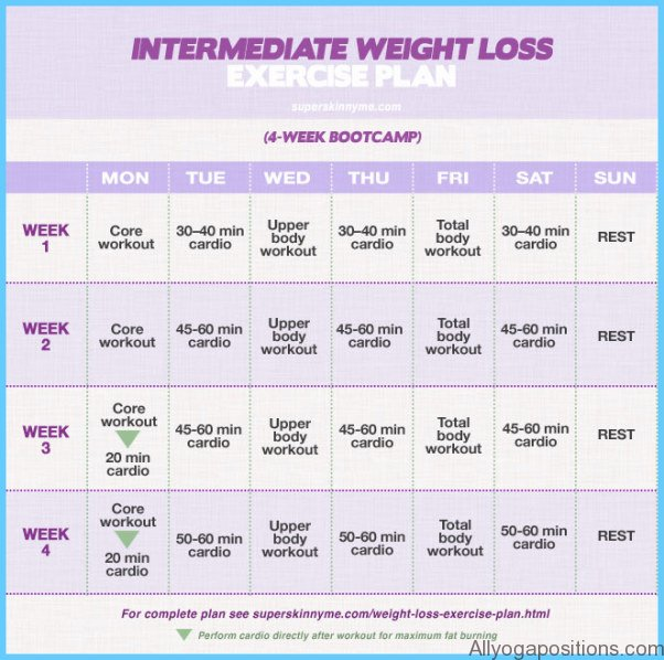 Exercise Programme For Weight Loss _0.jpg