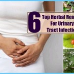 HERBAL REMEDIES for Urinary Tract Infections_5.jpg
