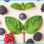 How to Balance and Increase Brain Neurotransmitters Naturally