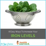 Ways to Increase Your Iron Levels