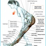 Top  hamstring stretch to prevent injury during workouts