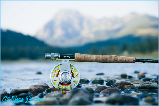 The Fishing Gear You Need for