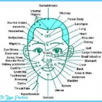 How Does Reflexology Work for Good Posture? _8.jpg