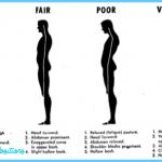What Is Posture? | Good Posture | Bad Posture_6.jpg