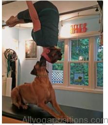 yoga therapy yoga treatment3