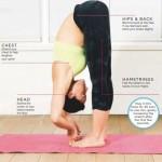 yoga pose hamstring help