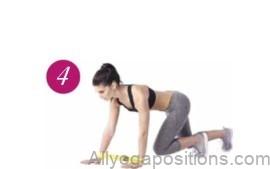 fitness expert 6
