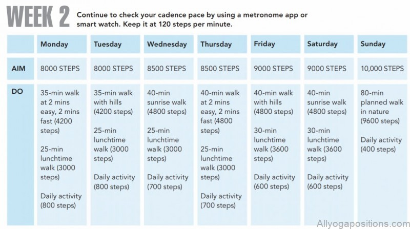 how to burn 500 calories everyday 14 days plan 4